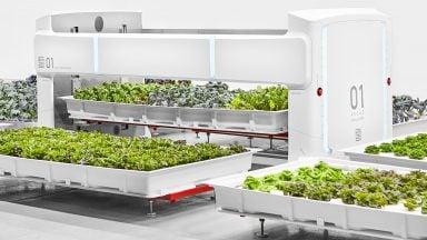 مزرعه هوشمند