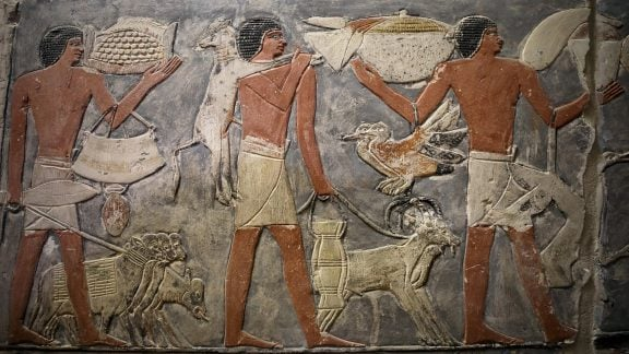 کشف یک مقبره در مصر با اجساد مومیایی، مجسمهها و نقاشیهایی از دوران مصر باستان