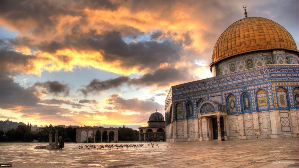 نیمی از تمذن ها در خاورمیانه شکل گرفتهاند.