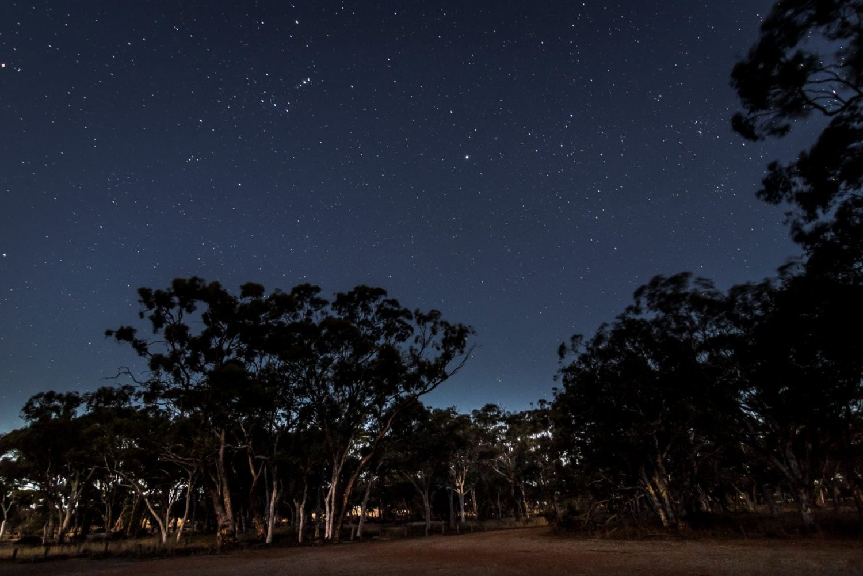 آسمانگردی غرب استرالیا-کوجان سالمون