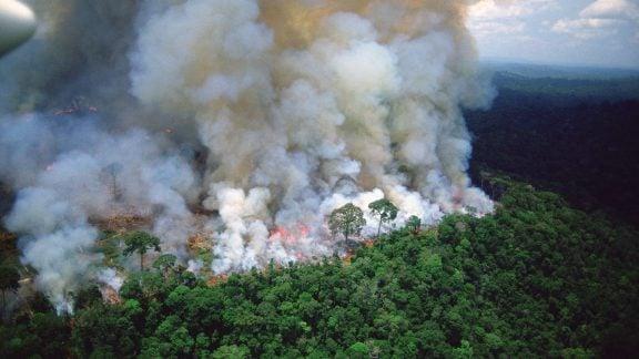 آتش سوزی جنگلهای آمازون