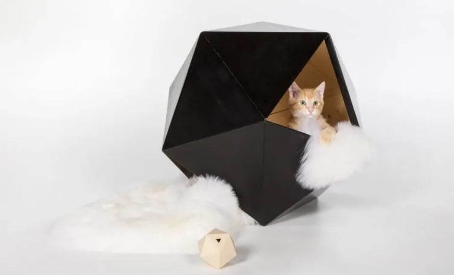 خانه معمارانه گربه ها