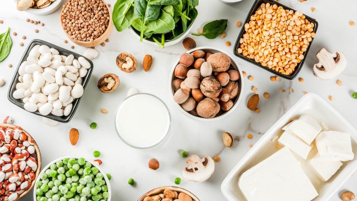 پروتئین های روزانه